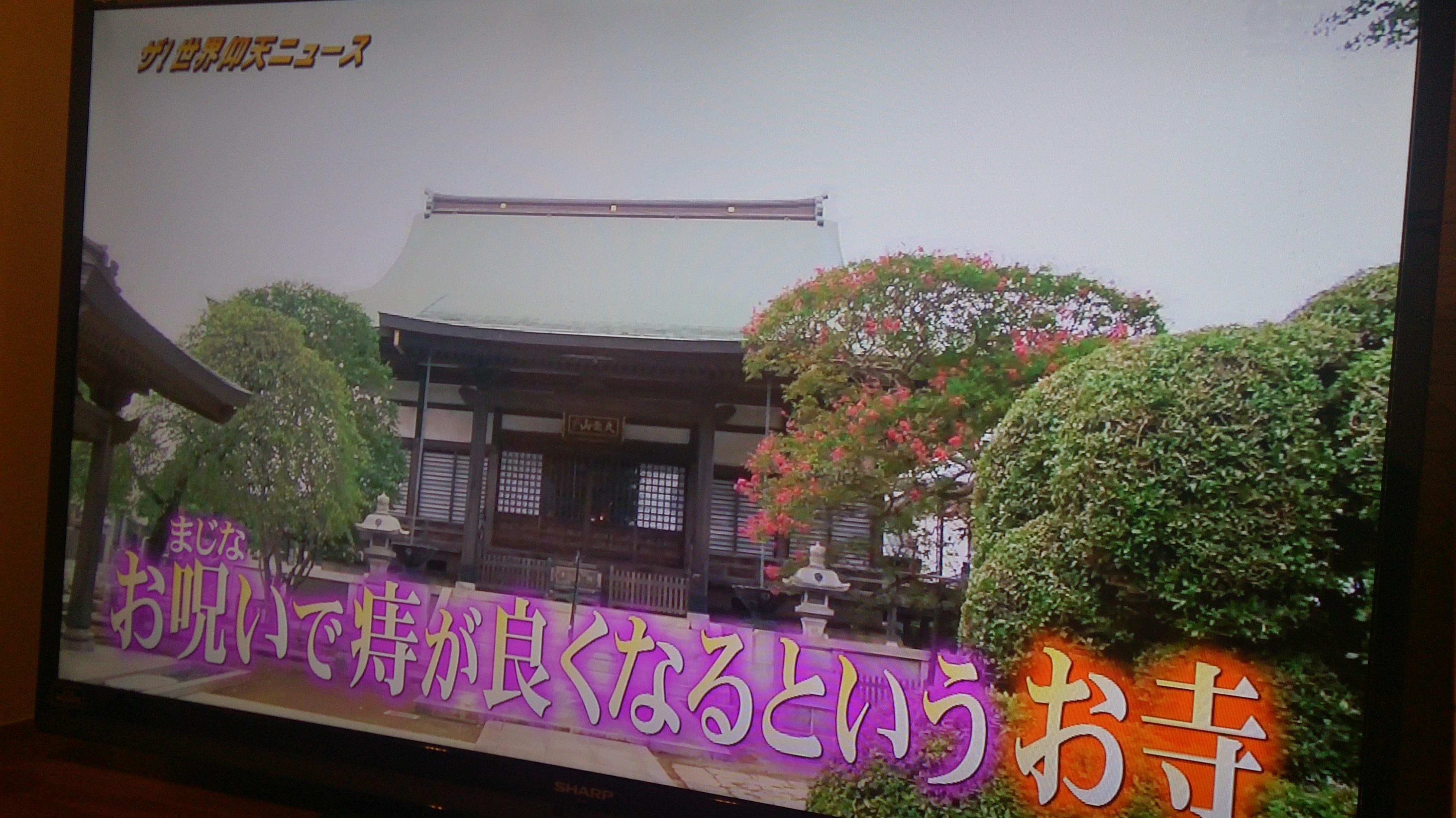 DSC_0753